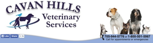 Cavan.Hills.Veterinary.Services.3