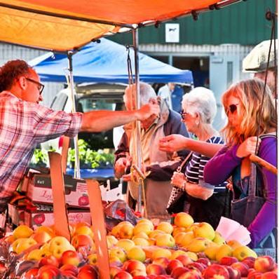 bethany-ontario-blog-farmers-market