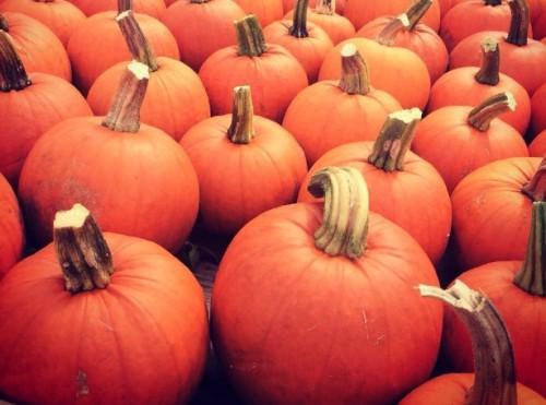 Bethany.Ontario.Blog.Pumpkin.Festival.1